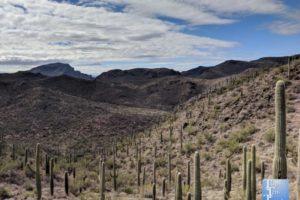 Bowen Canyon Hidden Trail In Tucson Az1