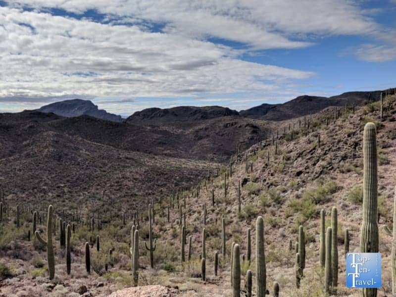 Bowen Canyon Hidden Trail In Tucson Az1